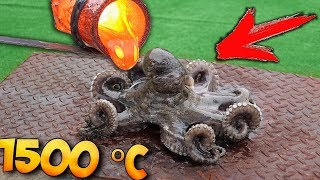 Download EXPERIMENT: WHAT IF to COOK in LAVA - OCTOPUS ? Video