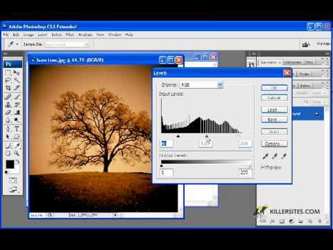 Photoshop CS3 Basics - Custom Shape Image