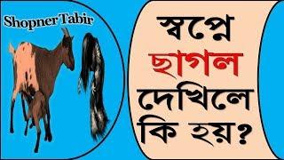 স্বপ্নে ছাগল দেখিলে কি হয় | স্বপ্নে ছাগল দেখার ব্যাখ্যা | Shopne chagol dekhar bekkha