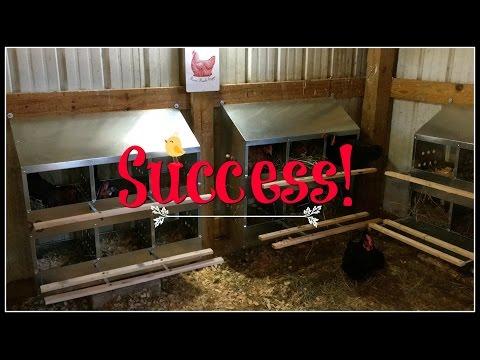 Success! New Nesting Box Love!