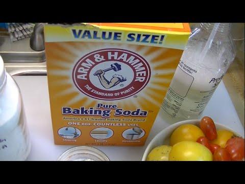 The Benefits of Baking Soda in the Garden ~ Noreen's Garden