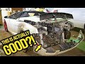 My Cheap Lamborghini Has A SERIOUSLY Sketchy History (And Why That's A GOOD Thing)