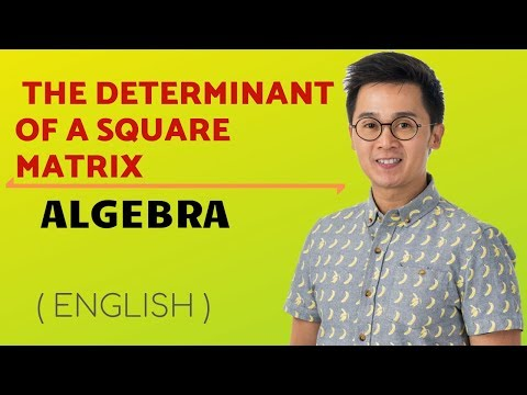 PRECALCULUS: Finding the Determinant of a 2x2 and 3x3 Matrices