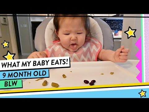 What My Baby Eats in a Day | 9 Month Old Baby Led Weaning (BLW) | HelloHannahCho