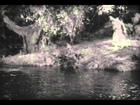 Xxx Mp4 Tarzan The Ape Man Trailer 1932 3gp Sex