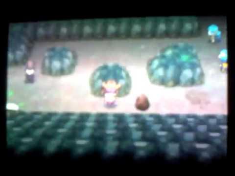 How to get through Victory Road~ Pokemon Black/White 2