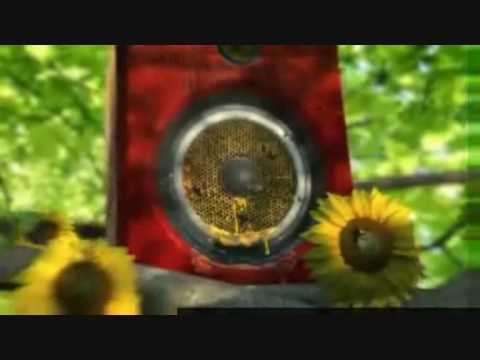 RTE TWO IDENT August 2009 to Present bees