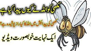 Why Allah Creat The Mikey  ( Allah Ne Makhi Ko Kyun Peda Kya Hai ) Urdu