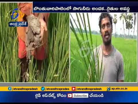 Paddy Crop Dried up in West Godavari Dist | Farmers Face Problems