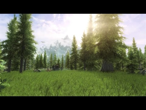 Skyrim SE Most Realistic Graphics/Immersive Mods Xbox One (February 2017)