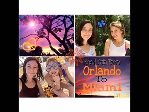 Road Trip From ORLANDO To MIAMI 🚗🌞🌴🌾