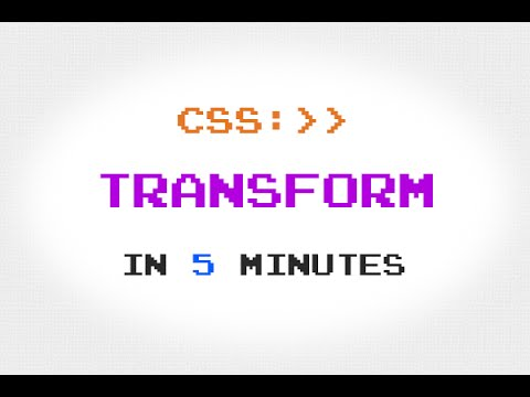 CSS Transform Property in 5 Minutes