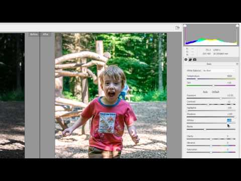 Photoshop Elements 15, Develop RAW files