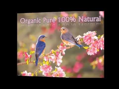Essential Oils - Organic 100% Pure Natural Certified Therapeutic