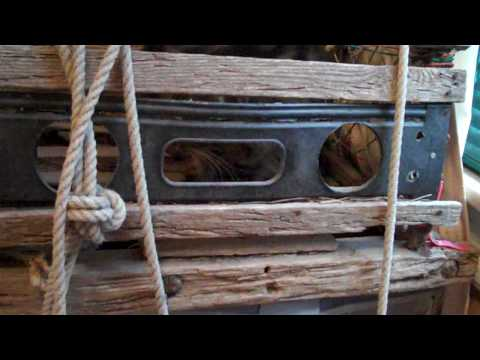 How a Lobster Trap Works - Part 1