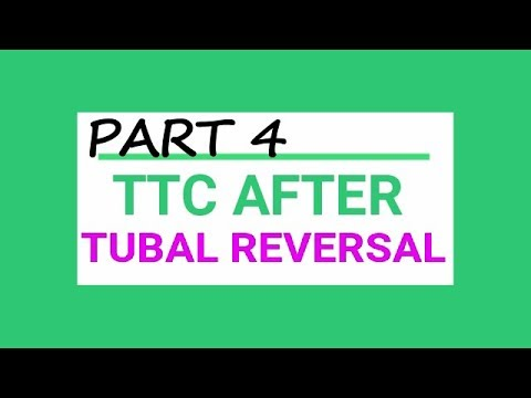 TTC after tubal reversal PART 4 GENDER REVEAL!