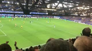 Raul Jimenez Goal At Everton Away (2/2/19)
