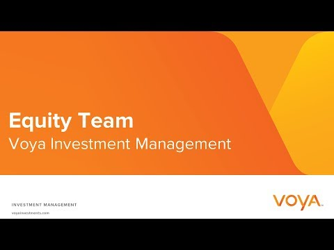 Voya Equity Team Overview