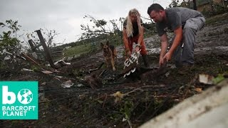 Storm Chaser Rescues Horse From Tornado