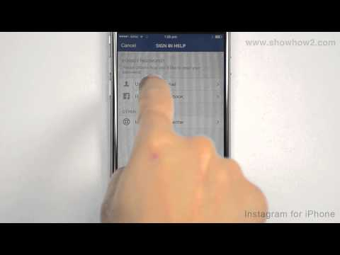Instagram For iPhone - How To Reset Password