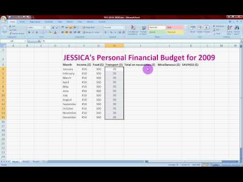 Personal Budgeting - Online tutorial with MS Excel 2007
