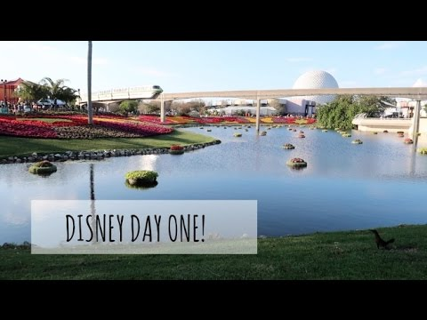 WE WENT TO EPCOT!