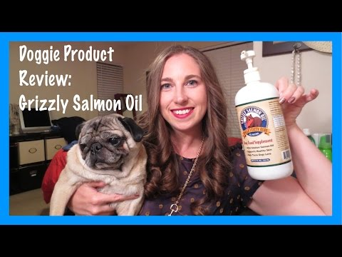 How to Reduce Dog Shedding + Dog Product Review: Grizzly Salmon Oil