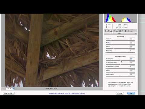 Photoshop CS5: Camera RAW