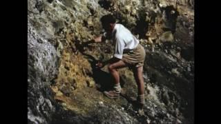 Volcanic Eruption on Tristan da Cunha, 1961 - Objectivity