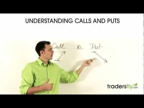 Understanding Calls and Puts