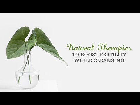 Natural Therapies to Boost Fertility While Cleansing