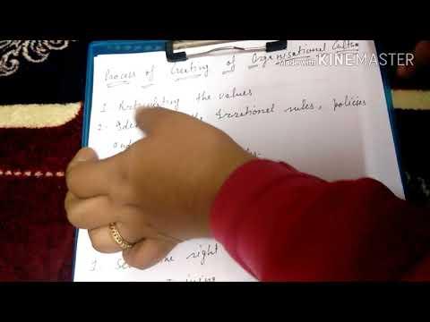 Organization culture in hindi