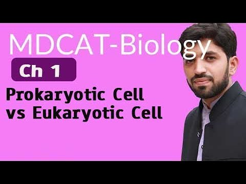MDCAT Biology,Entry Test,Ch 1,Prokaryotic Cell vs Eukaryotic Cell-Chapter 1 Cell Biology