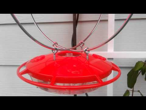 Winterized hummingbird feeder