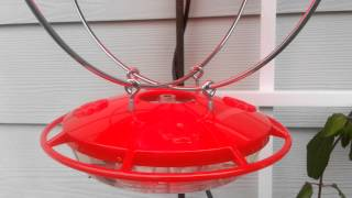 Winterized hummingbird feeder
