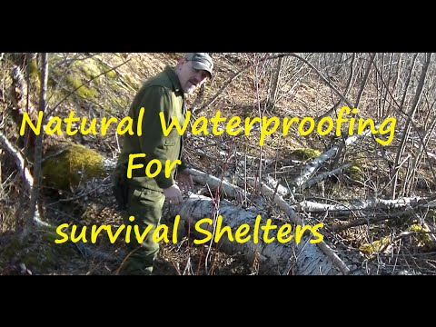 Natural Material for Water Proofing a Shelter