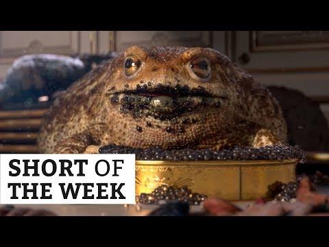 Garden Party - Oscar nominated animated short | Short of the Week #051