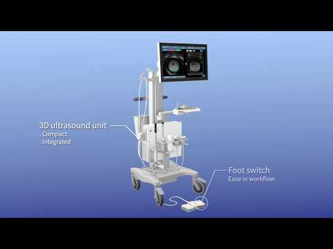Transperineal targeted prostate biopsy -Trinity®