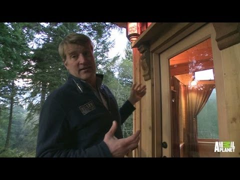 Behind the Build: Hippie Hideaway | Treehouse Masters