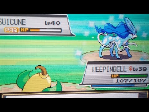 Shiny Suicune on SoulSilver after c.4700 SRs!