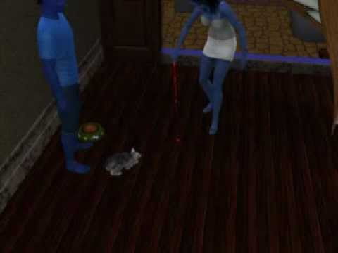 Sims 3 Pets: Cat Plays with Laser