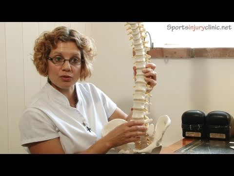 Sacroiliac Joint Pain (Si Joint) - A Chiropractors View