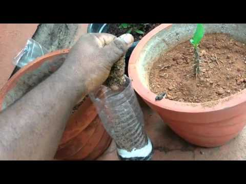 How to make a homemade water filter system