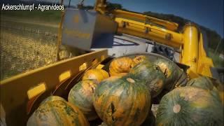 World Amazing Modern Agriculture Equipment Mega Machines Hay Bales, Tractor, Harvester, Pumpkins