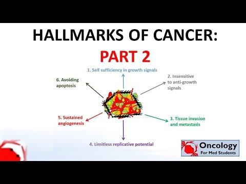 5. Hallmarks of cancer (part 2)