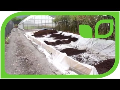 The easiest way to build an artificial bog garden (acidic soil)