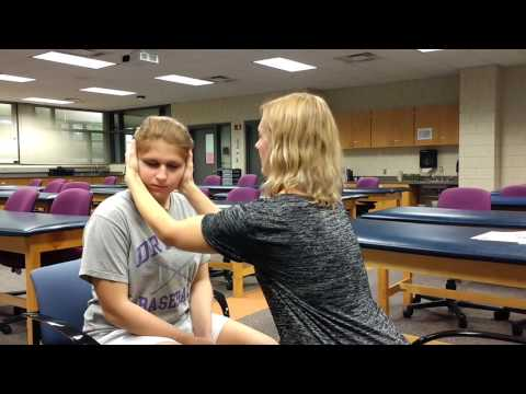 Head Shaking Nystagmus Test