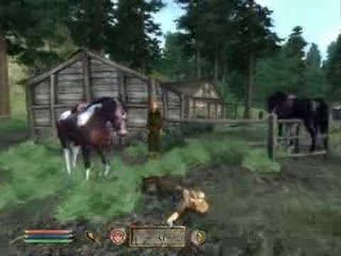Oblivion with sensitive horse