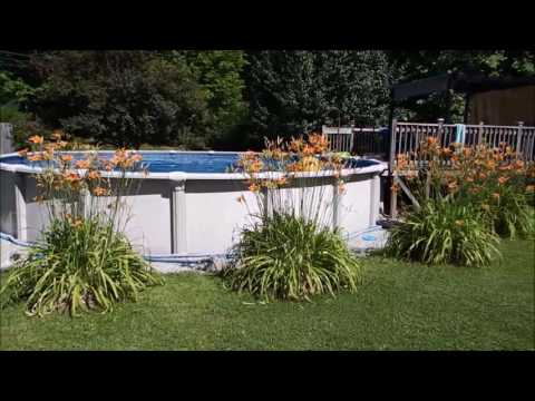 HOW TO KEEP YOUR POOL CRYSTAL CLEAR