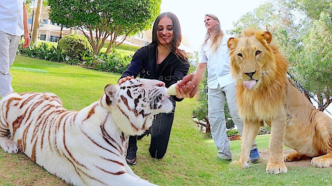 Visiting the Royal Family of Dubai !!!